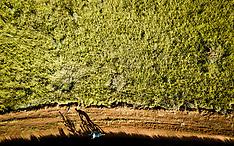 Avancini en Fumic winnen proloog Brazil Ride en vestigen record
